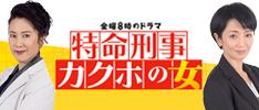 金曜8時のドラマ 特命刑事カクホの女:テレビ東京